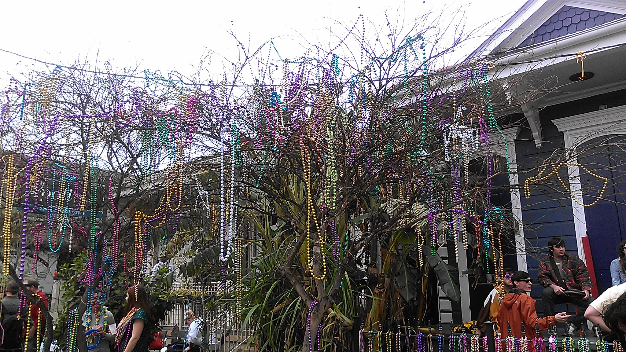 You Can Decorate Your Trees With Beads. After The Parades, Kids And  Merrymakers Tossed