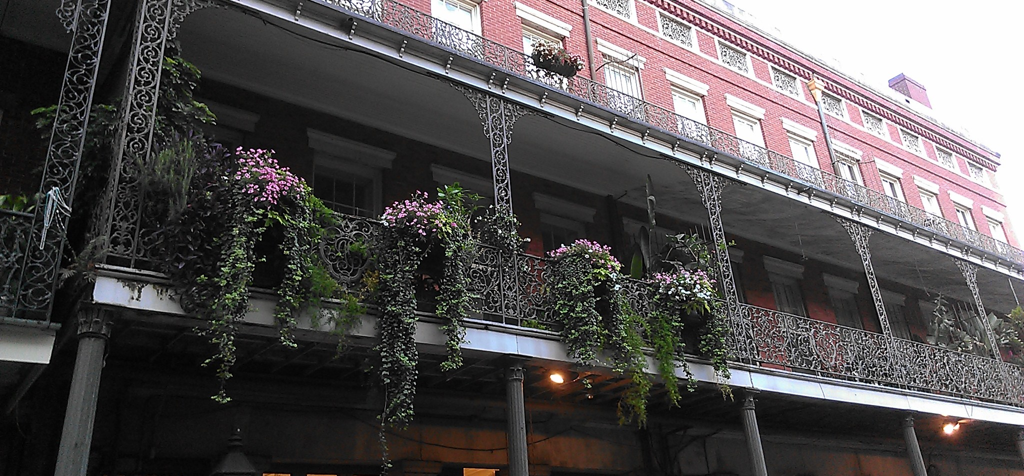Good places to live in new orleans new in nola for Nice places to live