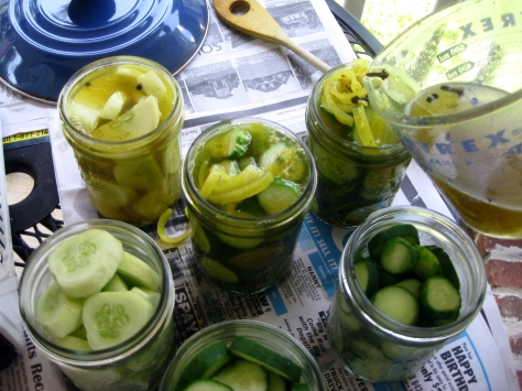 how to make dill pickles like a New Orleans native (photo by Patsy R. Brumfield/The Southfacin' Cook)