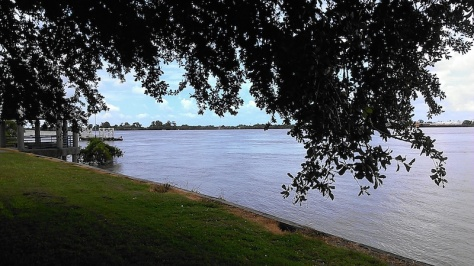 The Fly has plenty of grassy areas for picnicking on the banks of the Mississippi River. (photo by Carlie Kollath Wells/New in NOLA)
