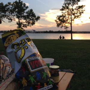You can go all out for a picnic, but a poboy or a bucket of chicken are easy options for quick meal with a gorgeous view. (photo by Carlie Kollath Wells, NewinNOLA.com)