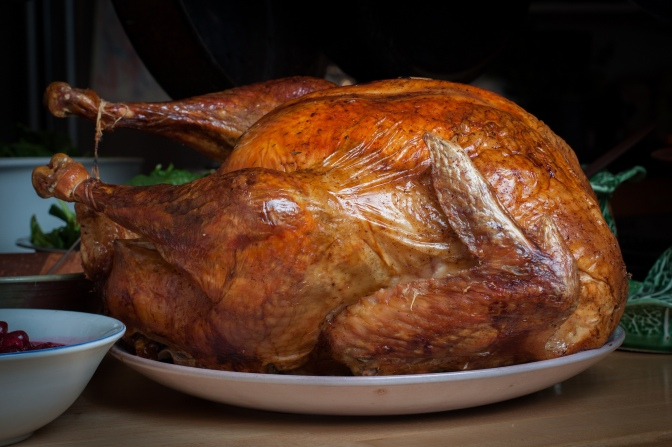 Thanksgiving turkey (photo by Tim Sackton/Creative Commons license)