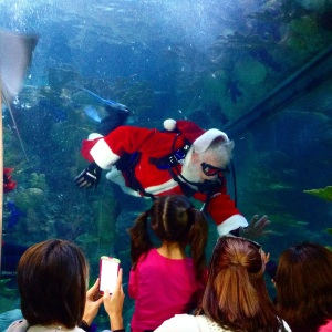Santa visited the fish at Audubon Aquarium. (photo by Carlie Kollath Wells/NewinNOLA.com)